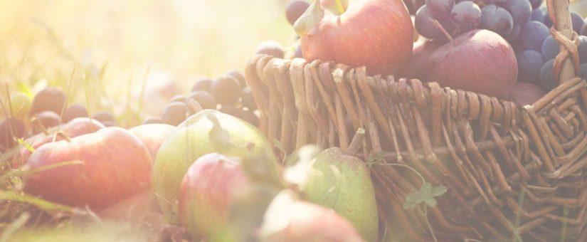 Notre alimentation représente le plus important facteur environnemental.
